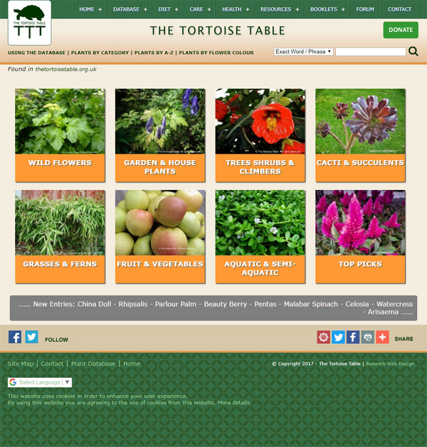 The Tortoise Table Website